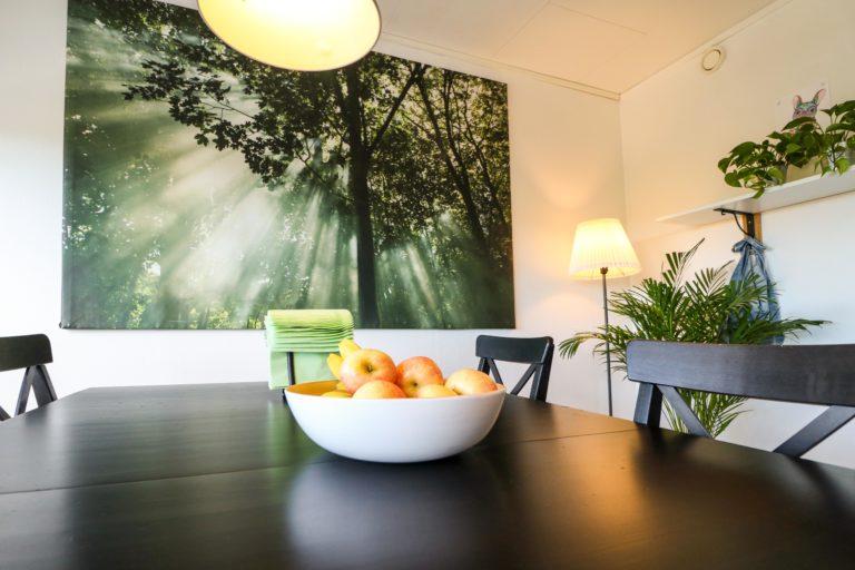 Nytida Trädgården fruktskål på köksbord